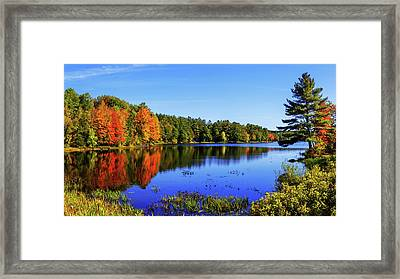 Incredible Framed Print