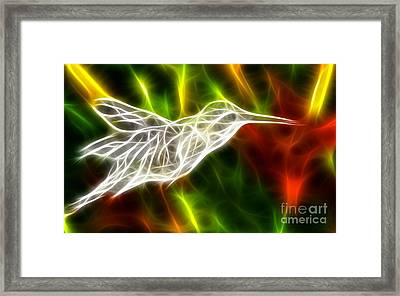 Incredible Hummingbird Framed Print by Pamela Johnson