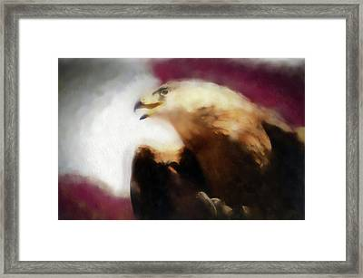 Independence Eagle Framed Print