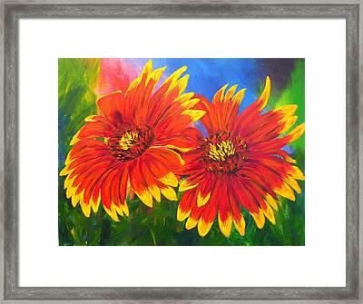 Indian Blanket Flowers Framed Print by Mary Jo Zorad