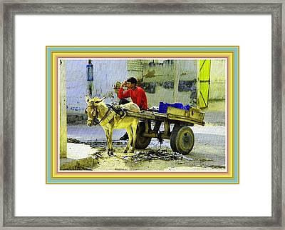 Indian Donkey Cart Owner H B With Decorative Ornate Printed Frame. Framed Print by Gert J Rheeders