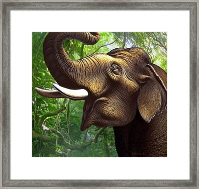 Indian Elephant 1 Framed Print by Jerry LoFaro