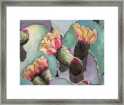 Indian Fig Cactus Framed Print by Regina Ammerman