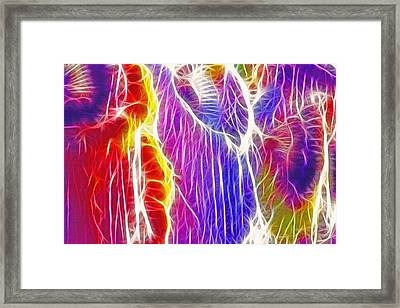 Indian Headdress Abstract Framed Print by Steve Ohlsen