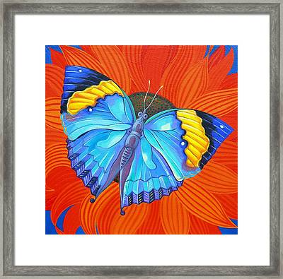 Indian Leaf Butterfly Framed Print by Jane Tattersfield