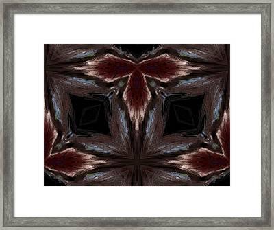 Indian Outlaw Framed Print by Karen M Scovill