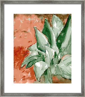 Indian Signs Framed Print by Marilyn Barton