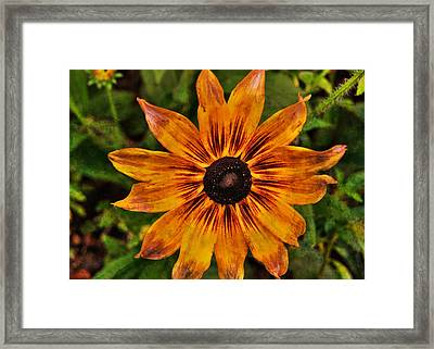 Indian Summer Framed Print by JAMART Photography