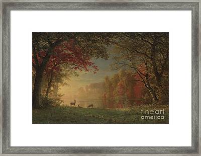 Indian Sunset Deer By A Lake Framed Print