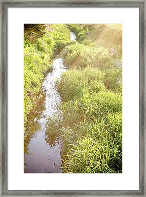 Indiana Creek At Sunset Framed Print by Anthony Doudt