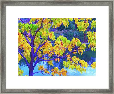 Indigo Autumn Framed Print