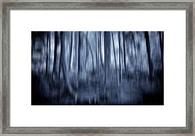 Indigo Dreams Framed Print by Maggie Terlecki