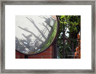 Indirect Nature Framed Print