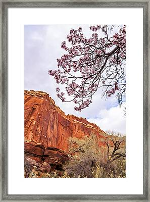 Individually Framed Print by Chad Dutson