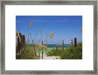 Framed Print featuring the photograph Indulging In Memories by Michiale Schneider