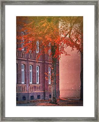 Industrial Autumn Framed Print by Nicole Frischlich