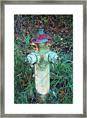 Industrial Mushroom Framed Print by Sergey and Svetlana Nassyrov