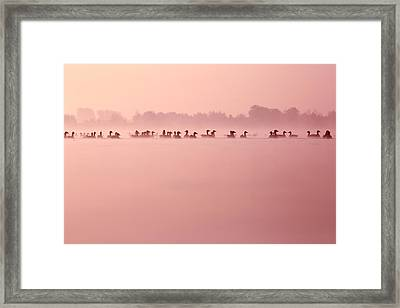 Infinity - Geese In The Mist Framed Print by Roeselien Raimond