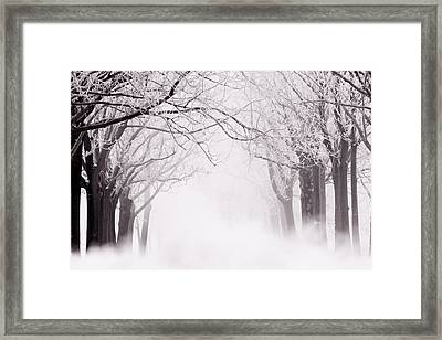 Infinity - Trees Covered With Hoar Frost On A Snowy Winter Day Framed Print