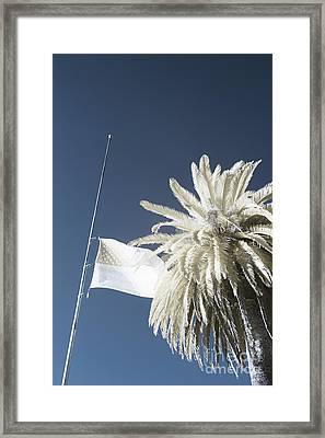 Infrared Flag Pole Framed Print