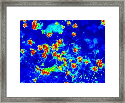 Framed Print featuring the photograph Infrared by Miriam Shaw