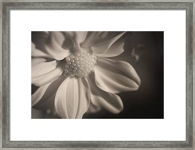 Infrared Mum Framed Print
