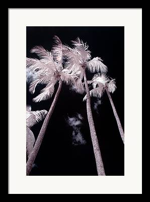 Infrared Digital Art Framed Prints