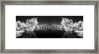 Infrared Reflections Framed Print