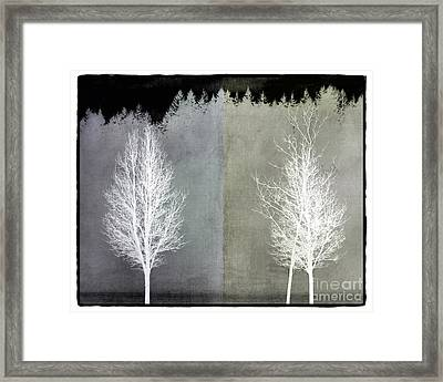 Infrared Trees With Texture Framed Print by Patricia Strand