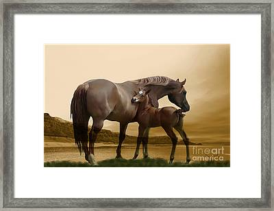 Inherit The Wind Framed Print by Corey Ford