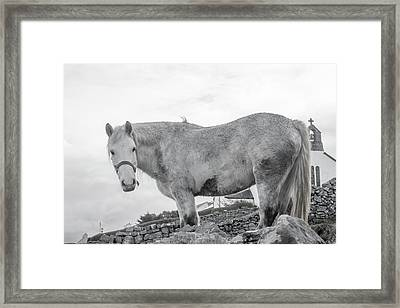 Inis Mor Old Spirit Framed Print by Betsy Knapp