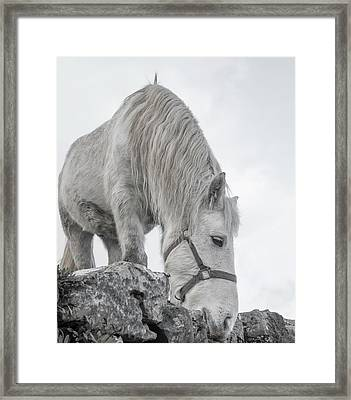 Inis Mor Tranquil Moments Framed Print by Betsy Knapp