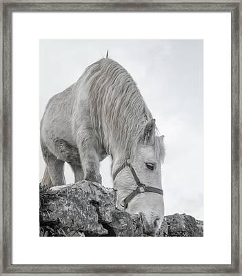 Inis Mor Tranquil Moments Framed Print