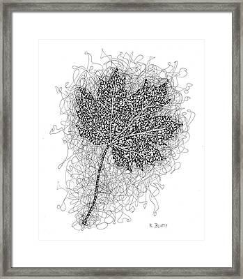 Ink Drawing Of Maple Leaf Framed Print
