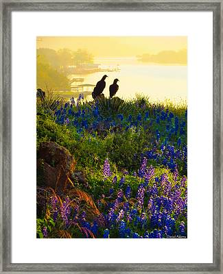 Da228 Inks Lake Love Daniel Adams Framed Print
