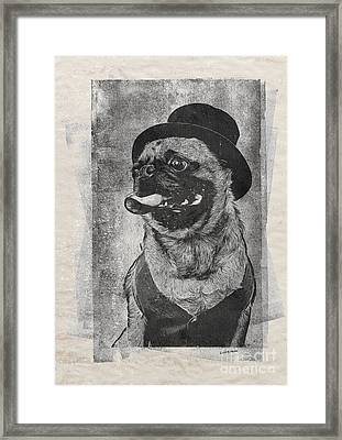 Inky Pug Framed Print by Edward Fielding