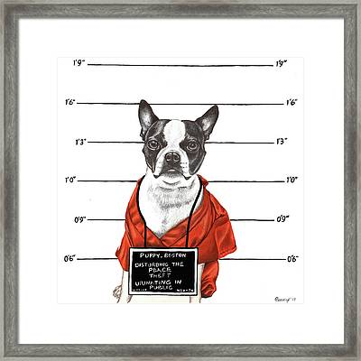 Inmate Framed Print by Courtney Kenny Porto