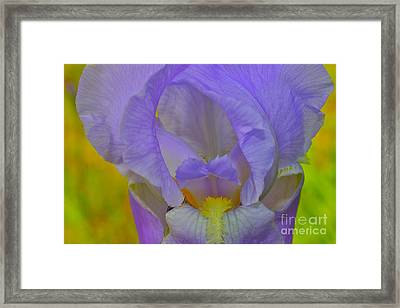 Inner Beauty Framed Print by Alice Mainville