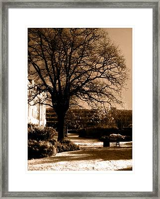 Framed Print featuring the photograph Inner Beauty  by Fine Art By Andrew David