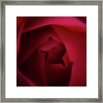 Inner Beauty Framed Print by Ernie Echols