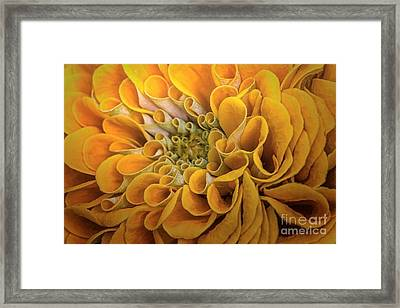 Inner Beauty Framed Print