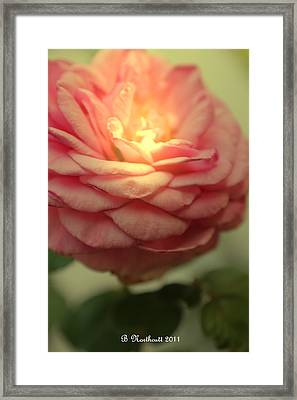 Inner Glow Framed Print by Betty Northcutt