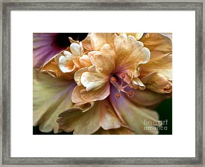 Framed Print featuring the photograph Inner Light by Ken Frischkorn
