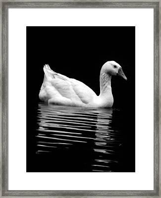 Inner Reflection Framed Print by Jessica Brawley