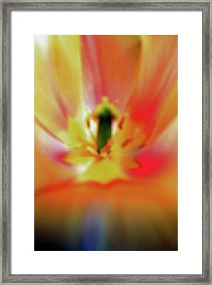 Inner Self Vertical Framed Print