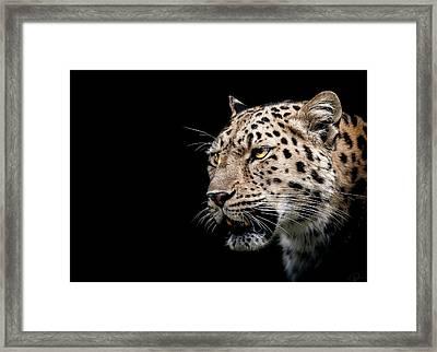 Inner Strength  Framed Print by Paul Neville