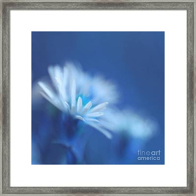 Innocence 11b Framed Print by Variance Collections