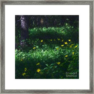 Innocence And Vigilance Framed Print by Royce Howland