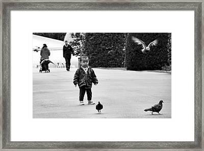 Innocence Framed Print by Fraser Davidson