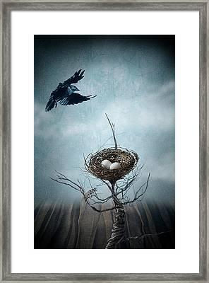 Innocence Framed Print by Maggie Terlecki